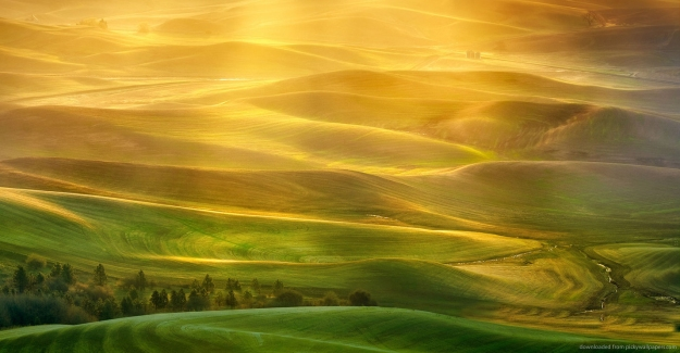 golden-light-europe