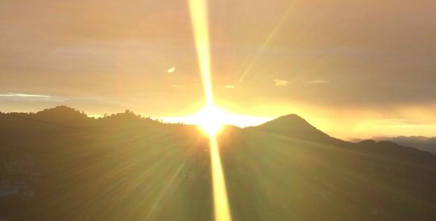himalaya golden sun