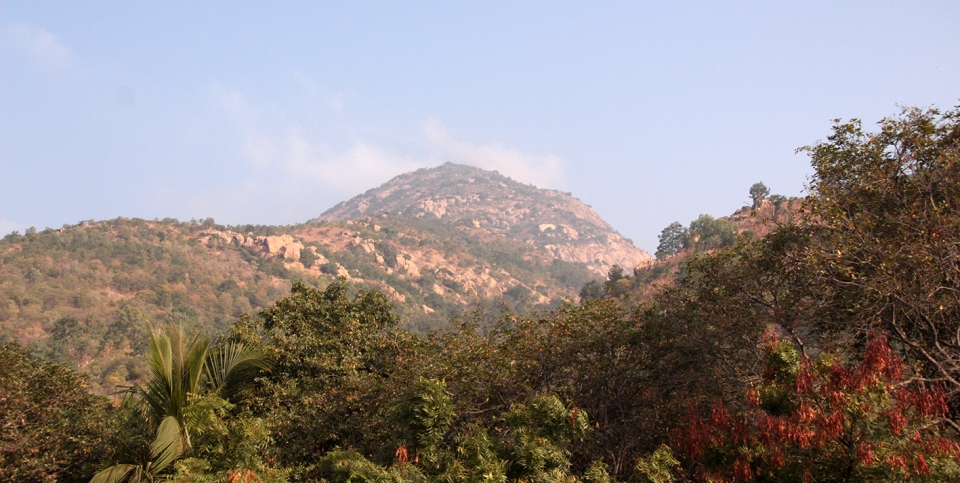 Arunachala afternoon copy
