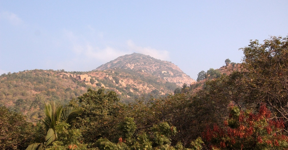 arunachala-afternoon-copy.jpg